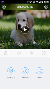 screenshot of Clever Dog version 2.4.0.207