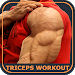 Triceps Workout Exercises